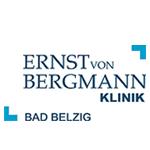Bergmann_200